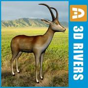 Bluebuck by 3DRivers 3d model