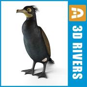Spectacled cormorant by 3DRivers 3d model