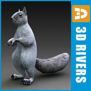 Squirrel van 3DRivers 3d model