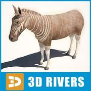 Quagga by 3DRivers 3d model