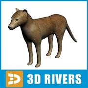 Thylacine by 3DRivers 3d model