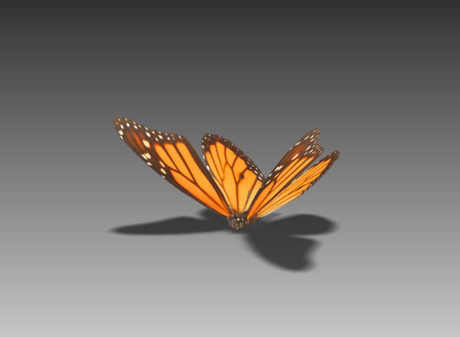 Motyl royalty-free 3d model - Preview no. 3