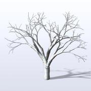 BareTree_1.mb 3d model