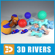 Pet toys set by 3DRivers 3d model