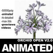 オーキッドオープン2 3d model