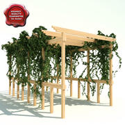 Pergola path with ivy 3d model