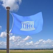 Real flag UNESCO 3d model