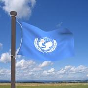 Real flag UNICEF 3d model