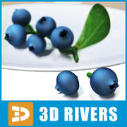 Blueberry by 3DRivers 3d model