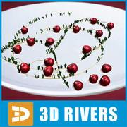 3DRivers的蔓越莓 3d model