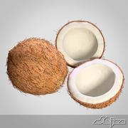 Coconut 3d model