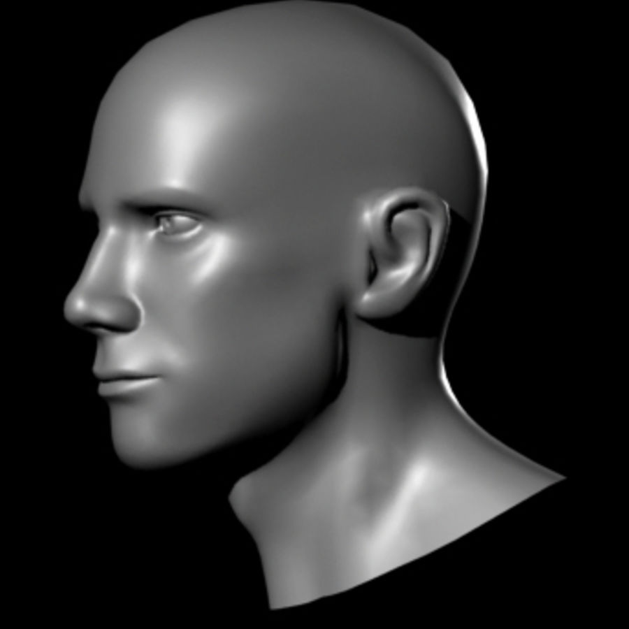 Male Head royalty-free 3d model - Preview no. 16