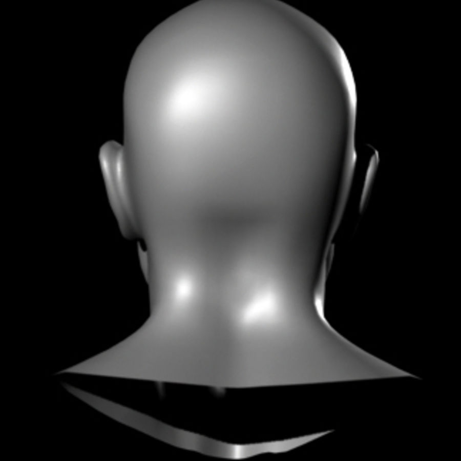 Male Head royalty-free 3d model - Preview no. 15