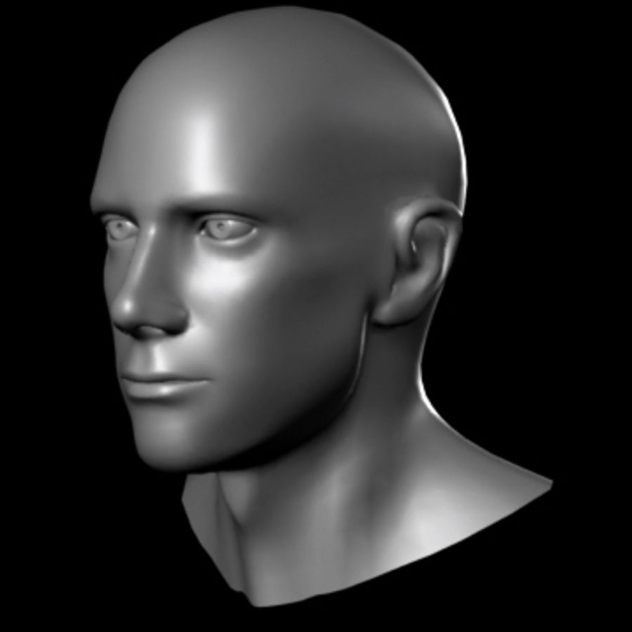 Male Head royalty-free 3d model - Preview no. 3
