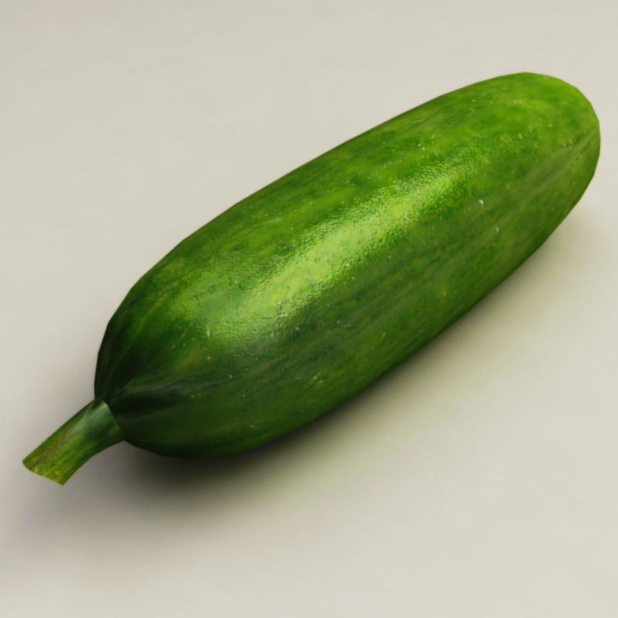Cucumber royalty-free 3d model - Preview no. 6