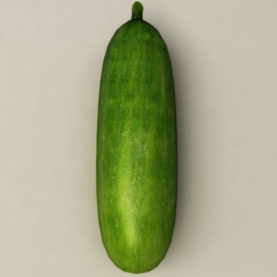 Cucumber royalty-free 3d model - Preview no. 8