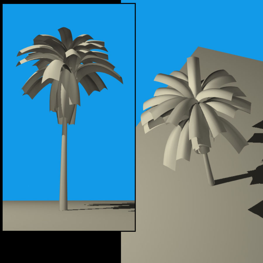 Palmtree Single royalty-free 3d model - Preview no. 2