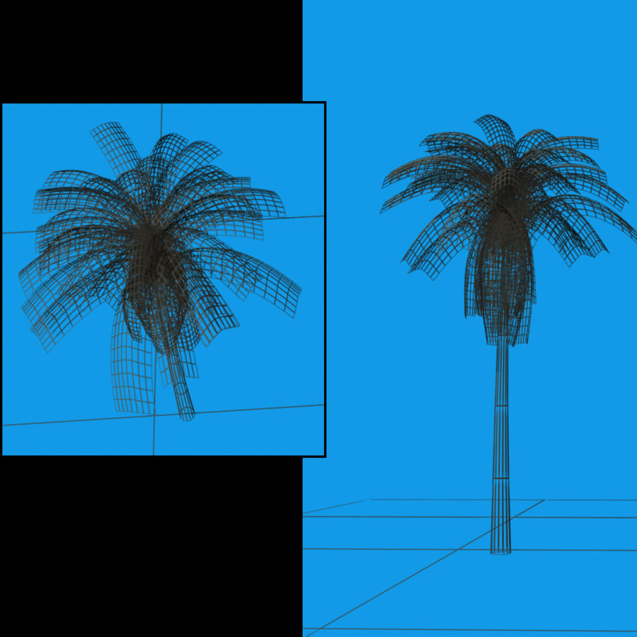 Palmtree Single royalty-free 3d model - Preview no. 3