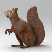 Squirrel 2 3d model