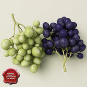 Grapes collection 3d model