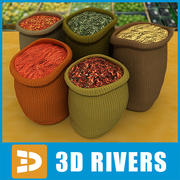 Spices  by 3DRivers 3d model
