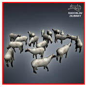 SHEEP herd lowpoly 3d model