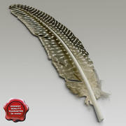 Bird feather V3 3d model
