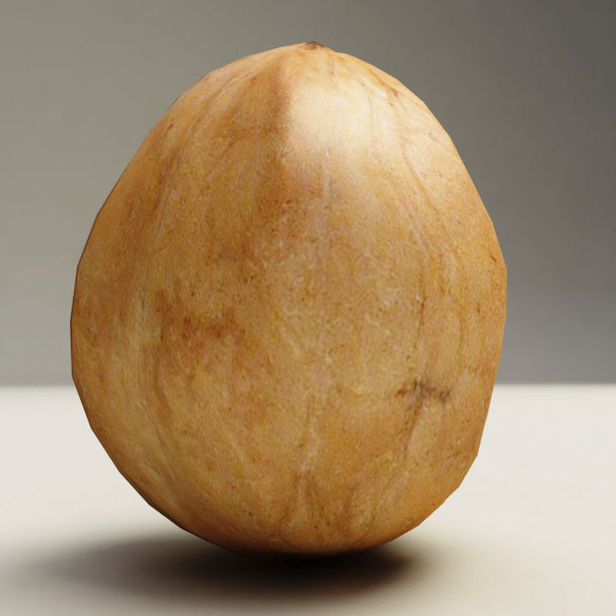 Walnut royalty-free 3d model - Preview no. 6