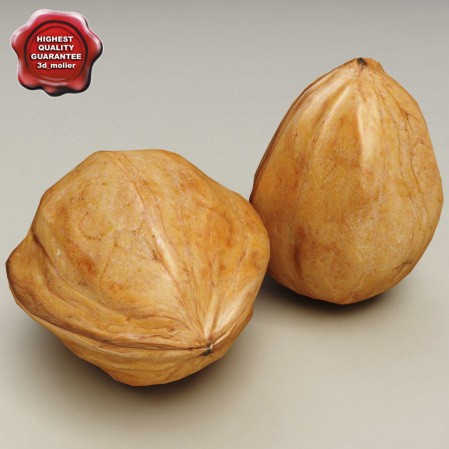 Walnut royalty-free 3d model - Preview no. 1