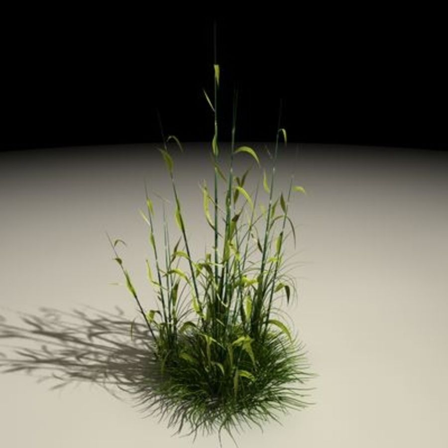Plant01_out.c4d.zip royalty-free 3d model - Preview no. 1