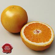 橙子 3d model