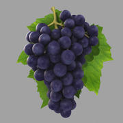 Black Grapes 3d model