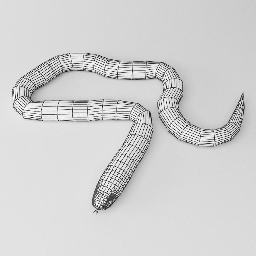 3DRivers tarafından mercan yılanı royalty-free 3d model - Preview no. 3