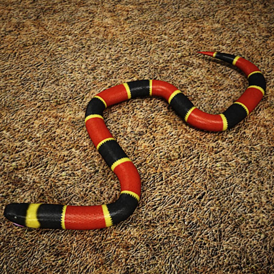3DRivers tarafından mercan yılanı royalty-free 3d model - Preview no. 2