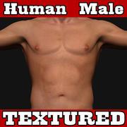 Erkek İnsan 3d model