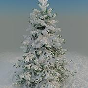 Fir under snow 3d model