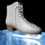 IceSkate.zip 3d model