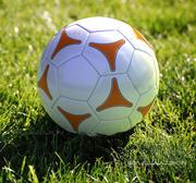 Soccer ball 01 3d model