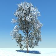 snowtree5 3d model