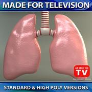 Lungs 01 (SCANLINE) 3d model