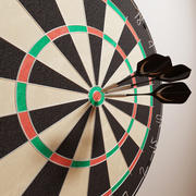 DartBoard_VRAY_15.zip 3d model