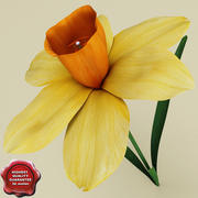 Narcisse 3d model