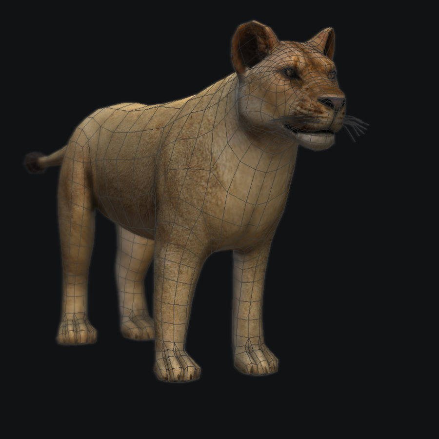 Lion royalty-free 3d model - Preview no. 2