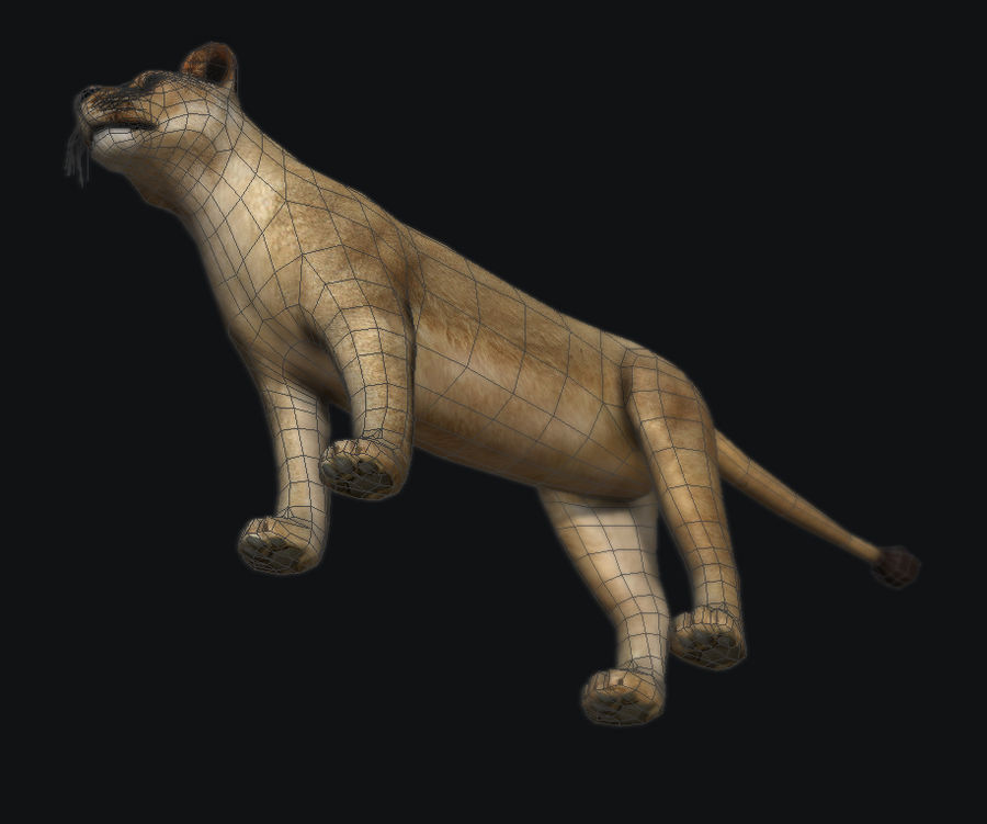 Lion royalty-free 3d model - Preview no. 7
