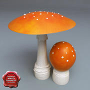 Fly-agaric 3d model