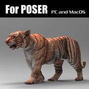 Tigre para Poser modelo 3d
