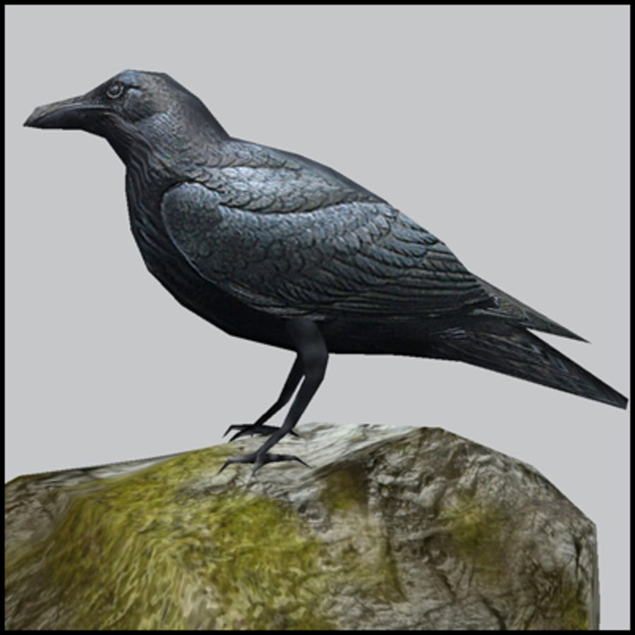 Raven,  low poly royalty-free 3d model - Preview no. 1