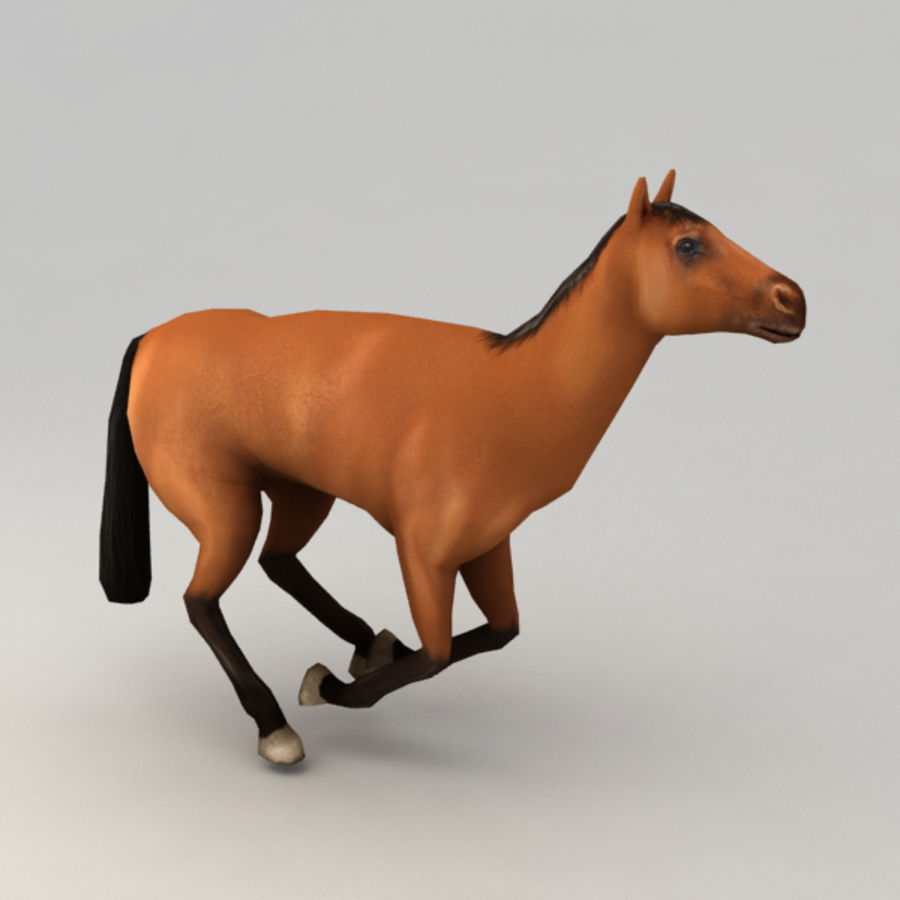 Horse rigged royalty-free 3d model - Preview no. 6