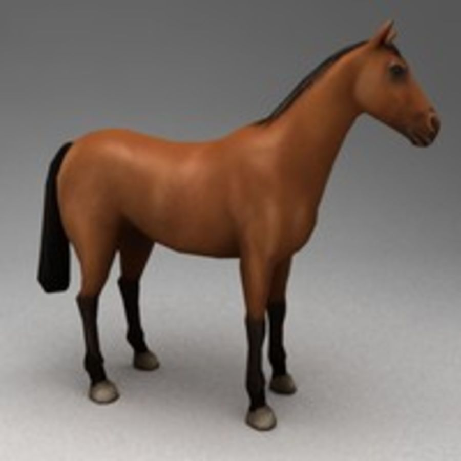 Horse rigged royalty-free 3d model - Preview no. 2