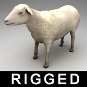 Sheep rigged 3d model